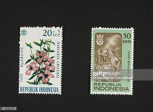 Postage stamp from the Flowers series depicting Philippine violet postage stamp depicting fishermen on the boat 1966 Indonesia 20th century Indonesia