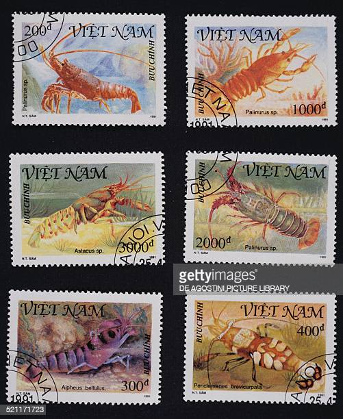 Postage stamps from the Crustaceans series depicting from left to right and from top to bottom Palinurus sp Palinurus sp Crayfish Palinurus sp Tiger...