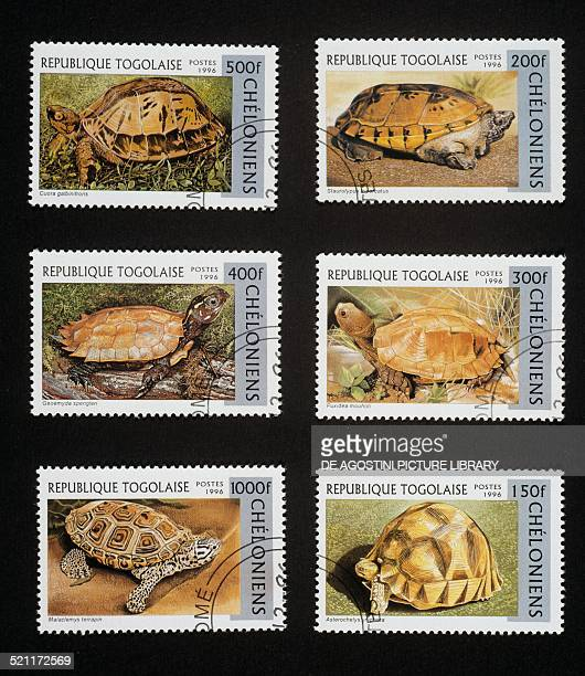 Postage stamps from the Turtles series depicting from left to right and from top to bottom Indochinese box turtle Mexican musk turtle Blackbreasted...