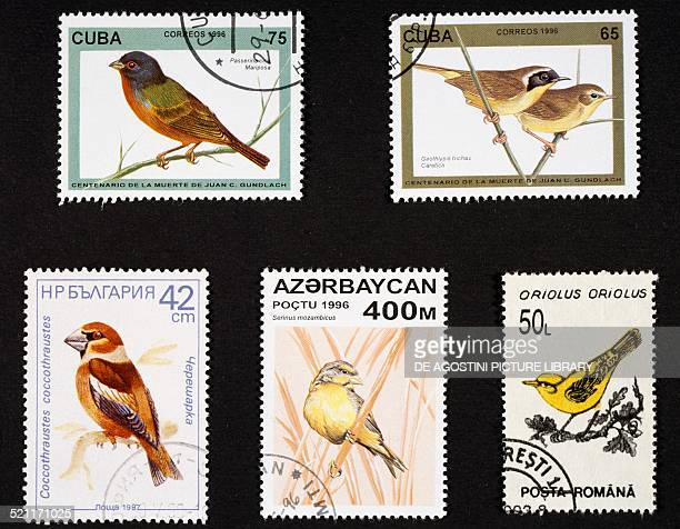 Postage stamps honouring birds from left to right and top to bottom postage stamp depicting Painted bunting and Common yellowthroat Cuba postage...