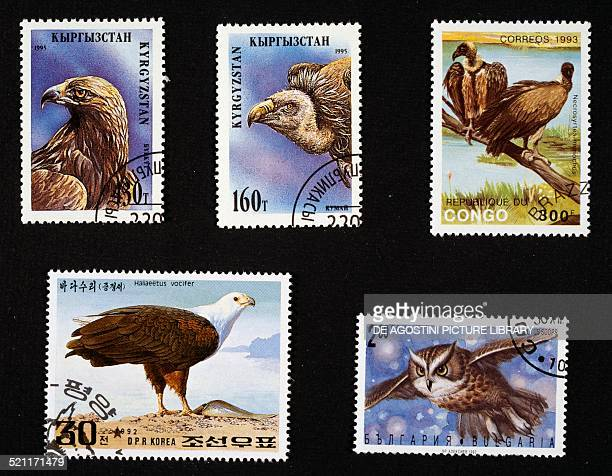Postage stamps honouring birds of prey from left to right and top to bottom postage stamps depicting Golden eagle and Griffon vulture Kyrgyz Republic...