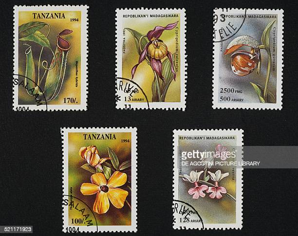 Postage stamps honouring Orchids top left and bottom left Tanzanian postage stamps depicting Nephentes hybrida and Thunbergia alata bottom Madagasy...
