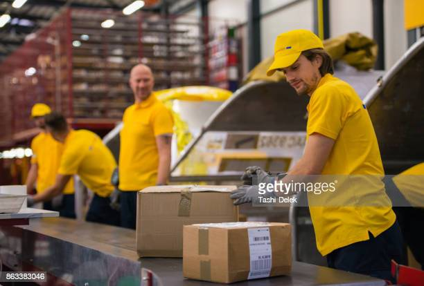 Postal Workers Sorting Packages On A Conveyor Belt