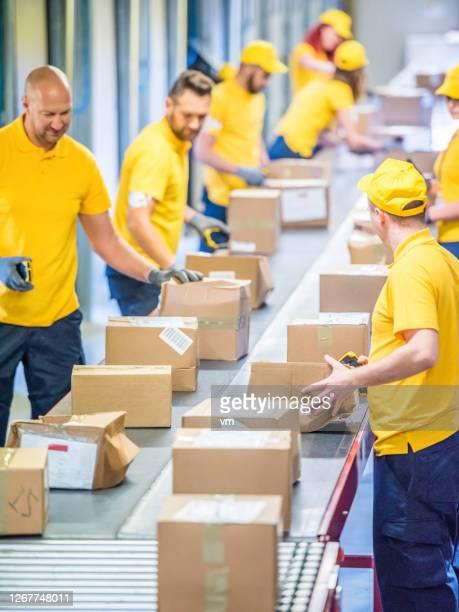 trabalhadores dos correios trabalhando com pacotes em uma esteira transportadora - carteiro - fotografias e filmes do acervo