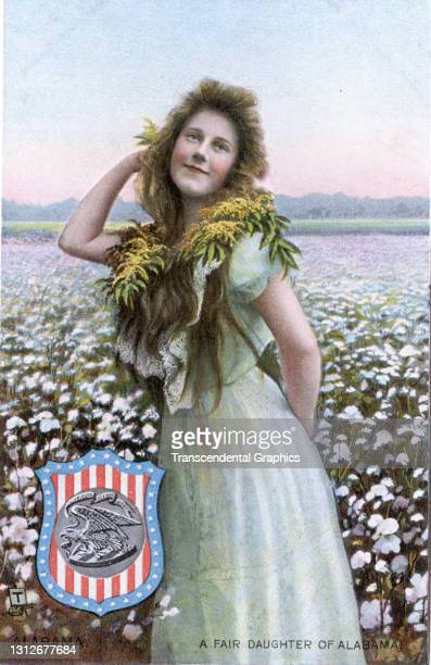 Postcard features an illustration of a young woman as she poses in a field of flowers, circa 1910. The postcard is part of series in which each...