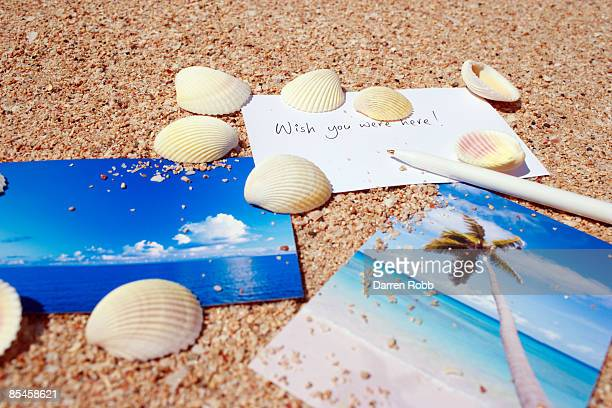 postcards and shells on the sand on beach - postcard stock pictures, royalty-free photos & images