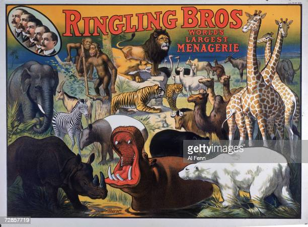 Poster advertises the Ringling Brothers circus world's largest menagerie 1909 The illustration features in the upper left profile portraits of the...