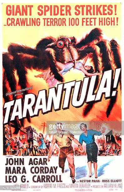 A poster for Jack Arnold's 1955 science fiction film 'Tarantula' starring John Agar and Mara Corday