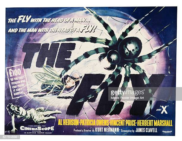 A poster for Kurt Neumann's 1958 horror 'The Fly' starring Patricia Owens