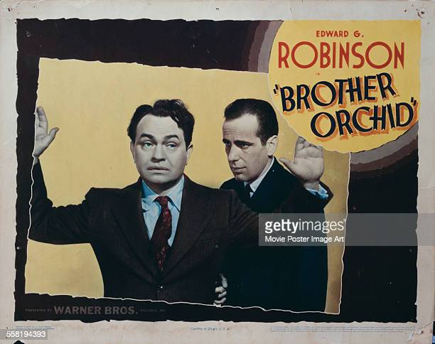 A poster for Lloyd Bacon's 1940 comedy 'Brother Orchid' starring Edward G Robinson and Humphrey Bogart