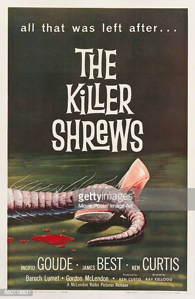 A poster for Ray Kellogg's 1959 horror film 'The Killer Shrews'