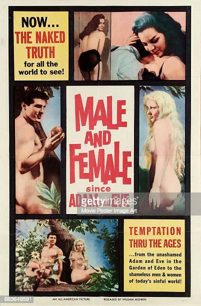 Image contains suggestive contentA poster for the Argentine pornographic film 'Male and Female Since Adam and Eve' 1961