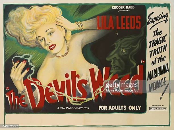 A poster for the British release of Sam Newfield's 1949 exploitation film 'The Devil's Weed' starring Lila Leeds The film's alternative titles are...