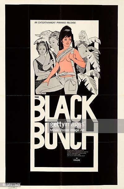 Image contains suggestive contentA poster for the pornographic film 'The Black Bunch' aka 'Jungle Sex' an Entertainment Pyramid release 1973