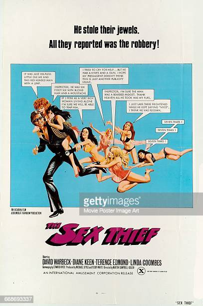 Image contains suggestive contentA poster for the soft core porn film 'The Sex Thief' directed by Martin Campbell 1974