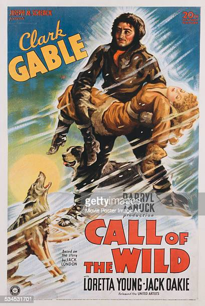 A poster for William A Wellman's 1935 action film 'The Call of the Wild' starring Clark Gable and Loretta Young