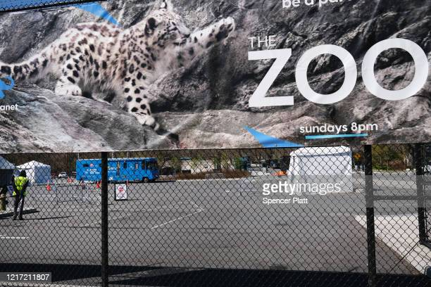 A poster hangs from a fence at the Bronx Zoo on April 06 2020 in New York City A tiger at the zoo has tested positive for COVID19 the Wildlife...
