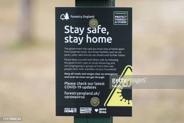 Poster is seen showing the rules set by Forestry England next to a car park to aid with social distancing on June 06, 2020 in The New Forest,...