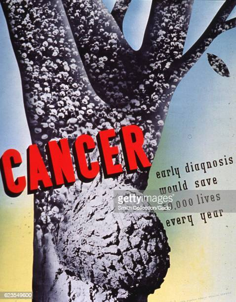 Poster issued by the United States Public Health Service depicting a tree with a growth advocating for cancer awareness 1970 Courtesy National...
