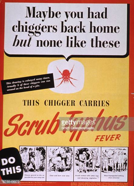 Poster issued by the United States War Department depicting a chigger and illustrations of people protecting themselves from Scrub Typhus 1945...