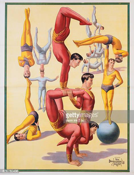 Poster of Stock Acrobats