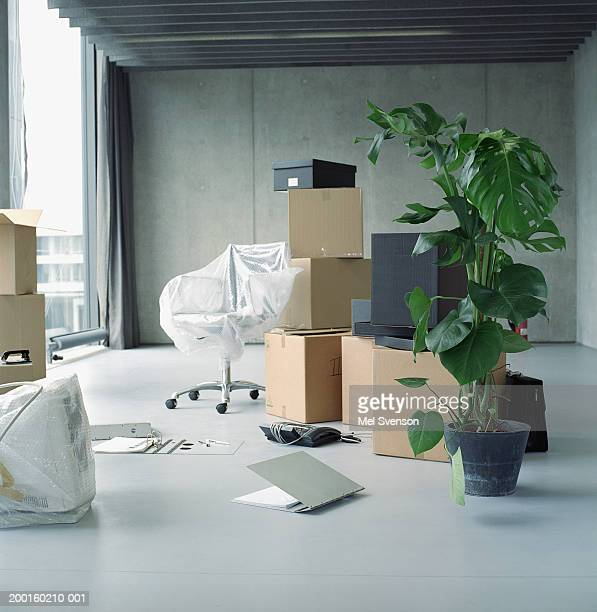 Pot plant, boxes and chair covered in bubble wrap in office