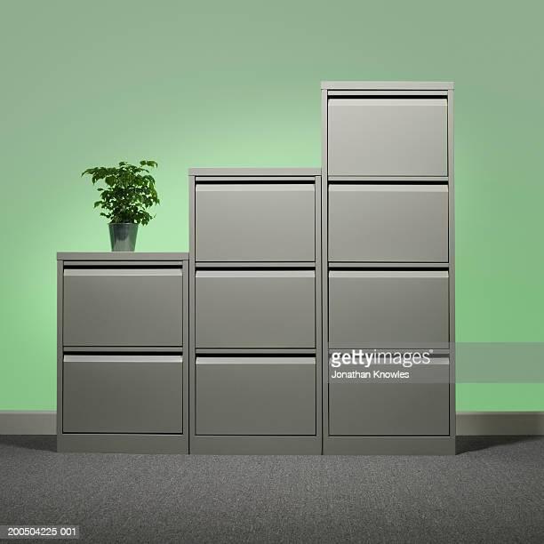 pot plant on office cupboard - キャビネット ストックフォトと画像