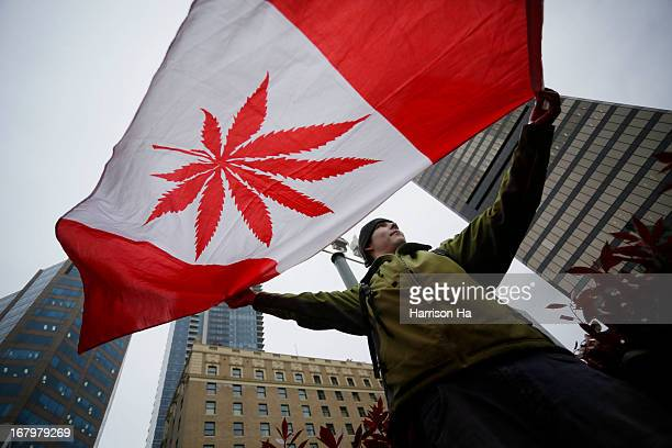 CONTENT] A pot supporter holds up a flag to celebrate the International Cannabis Day in Downtown Vancouver British Columbia Canada