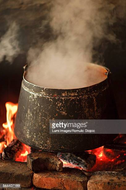 Pot with fish stew on fire, Baranja, Croatia