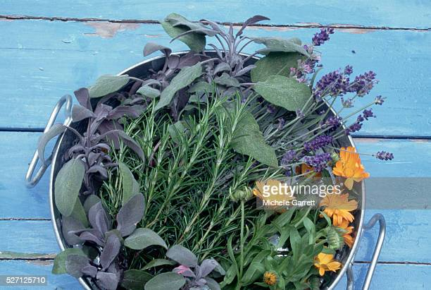 Pot with Herbs and Edible Marigold Flowers