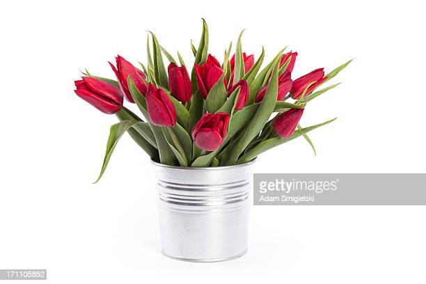 pot with red tulips - plant pot stock pictures, royalty-free photos & images