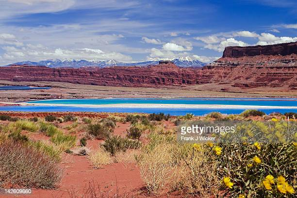 potash lake in colorado plateau bachcountry - potash stock pictures, royalty-free photos & images
