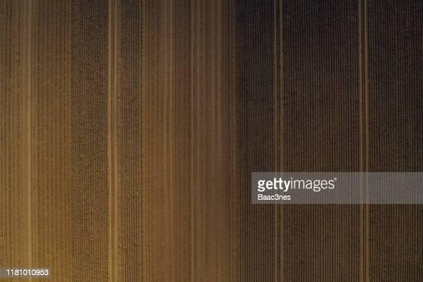 potato field seen from above - abstract line art - terra coltivata foto e immagini stock