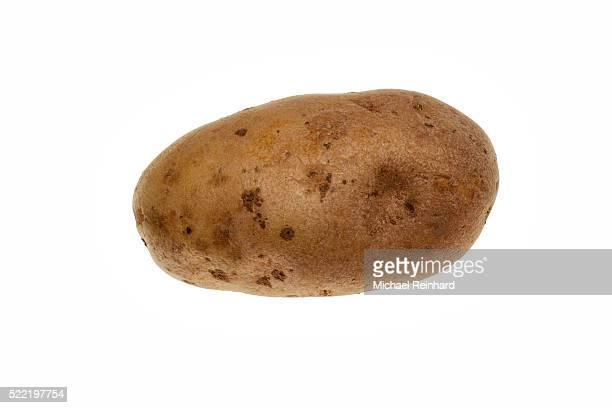 potato - raw potato stock pictures, royalty-free photos & images