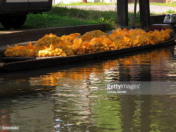 Potato transport in small boat on canal, Spree Forest, Brandenburg, Germany
