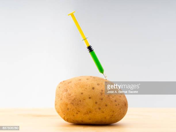 Potato with a laboratory syringe nailed to an experiment ; food concept transgenic and modified genetically.