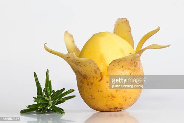 potato with rosemary - 剥いた ストックフォトと画像