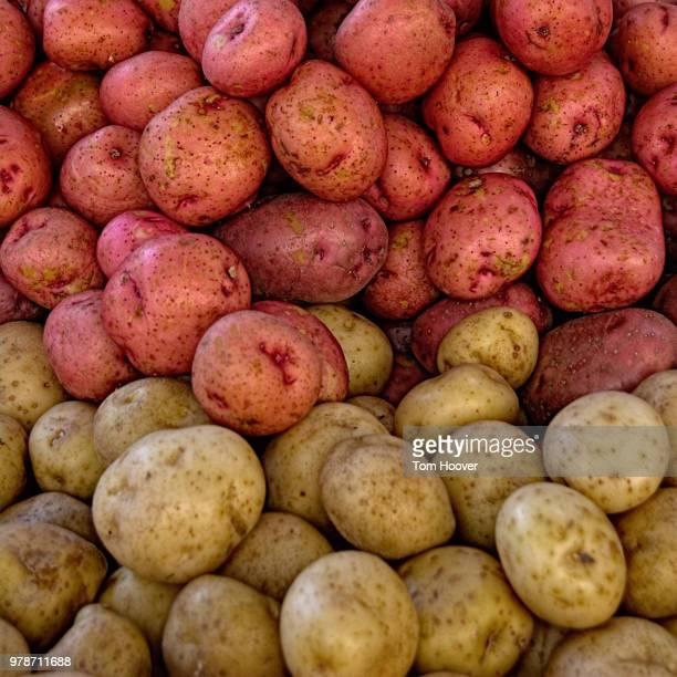 Potatoes as Rothko
