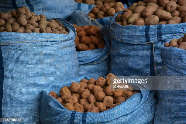 potatoes market bolivia - sac stock pictures, royalty-free photos & images