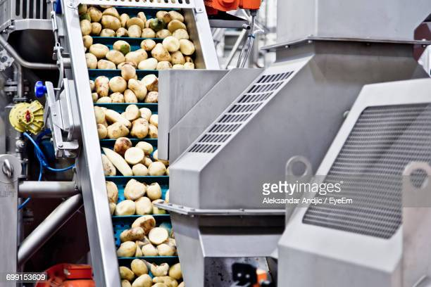 Potatoes On Food Processing Plant In Factory