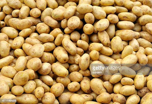 potatoes - raw potato stock pictures, royalty-free photos & images