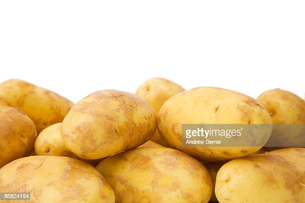 potatoes  - andrew dernie stock pictures, royalty-free photos & images
