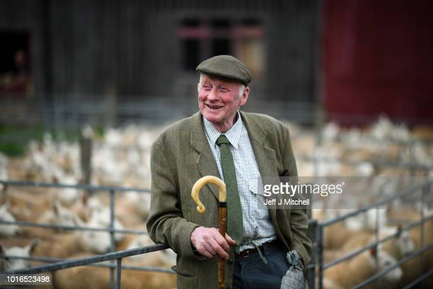 Potential buyers watch as sheep farmers gather at Lairg auction for the great sale of lambs on August 14 2018 in Lairg Scotland Lairg market hosts...