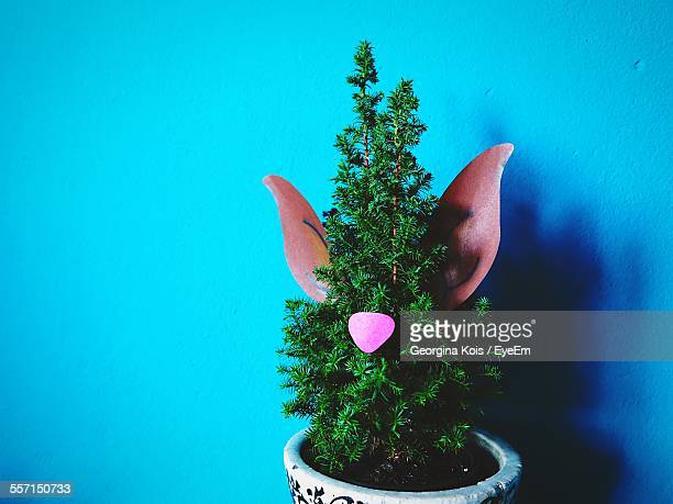 potted plant against blue wall - animal representation stock pictures, royalty-free photos & images