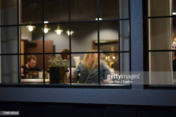 potted plant against friends in illuminated house seen through window at night - illuminate stock photos and pictures