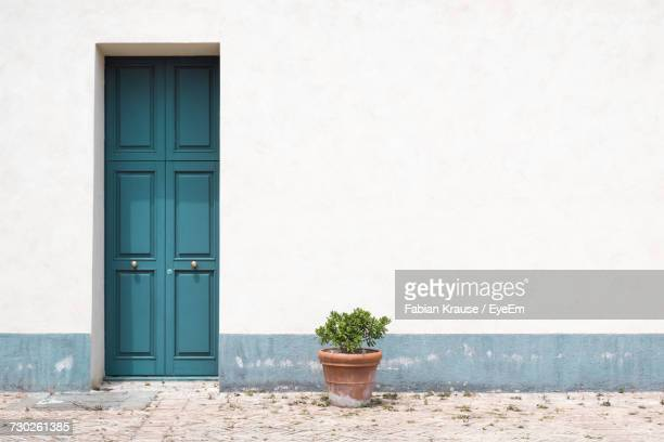 potted plant against wall with door - mediterranean culture stock pictures, royalty-free photos & images