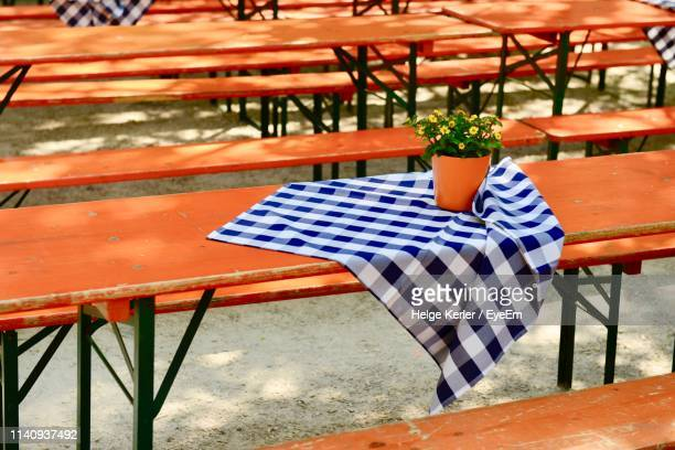 potted plant and checked fabric on table - geblokt stockfoto's en -beelden