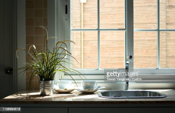 potted plant and coffee cups on table by window at home - kitchen sink stock pictures, royalty-free photos & images