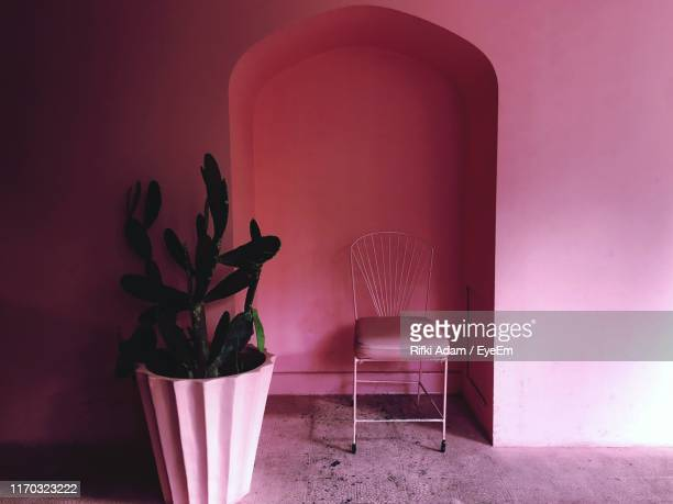 potted plant and empty chair against wall at home - arch stock pictures, royalty-free photos & images