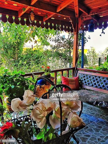 Potted Plant And Sofa In Balcony
